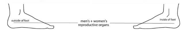 fertility vita flex points