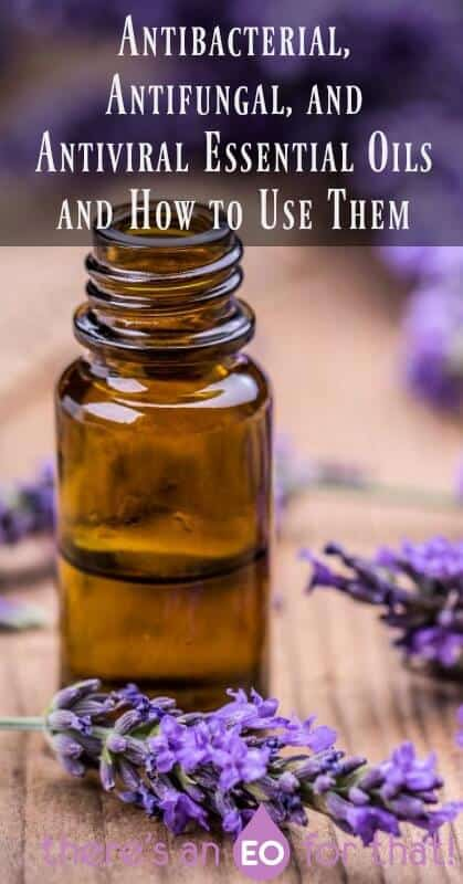 Antibacterial, Antifungal, and Antiviral Essential Oils and How to Use Them