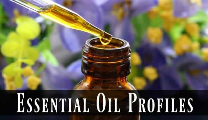 Essential Oil Profiles and Therapeutic Uses
