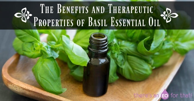 The Benefits and Therapeutic Properties of Basil Essential Oil
