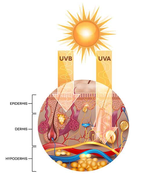 Do essential oils or carrier oils protect the skin from the sun?