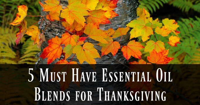 5 Must Have Essential Oil Blends for Thanksgiving