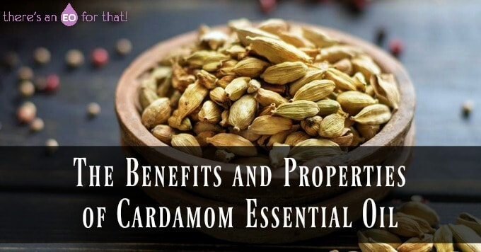The Benefits and Properties of Cardamom Essential Oil