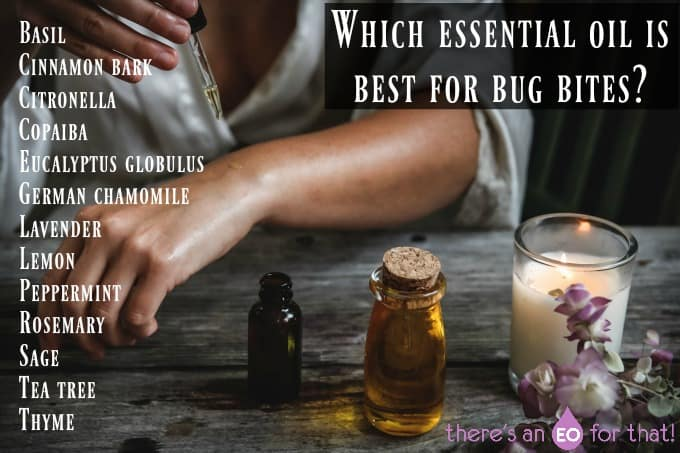 Which essential oil is best for bug bites?